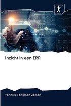 Inzicht in een ERP