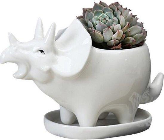 BaykaDecor - Keramische Bloempot in Dinosaurus Vorm - Triceratops - Cactus Vaasje - Wit - Dino Planten Pot met Dienblad - 16 cm