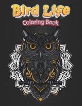 Bird Life Coloring Book