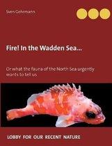 Fire! In the Wadden Sea...
