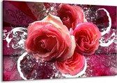 Canvas schilderij Roos   Roze, Paars, Wit   140x90cm 1Luik