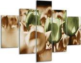 Glasschilderij Tulpen | Bruin, Groen, Wit | 100x70cm 5Luik | Foto print op Glas |  F002774