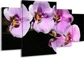 Canvas schilderij Orchidee | Zwart, Paars, Wit | 160x90cm 4Luik