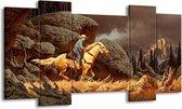 Canvas schilderij Paard | Bruin, Geel, Grijs | 120x65 5Luik