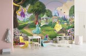 Komar Disney Princess Rainbow Fotobehang 368x254cm