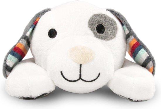 Zazu - Dex - Hartslagknuffel - Muziekknuffel met huilsensor en uitneembare geluidsmodule welke hartslag en meerdere muziekjes afspeelt