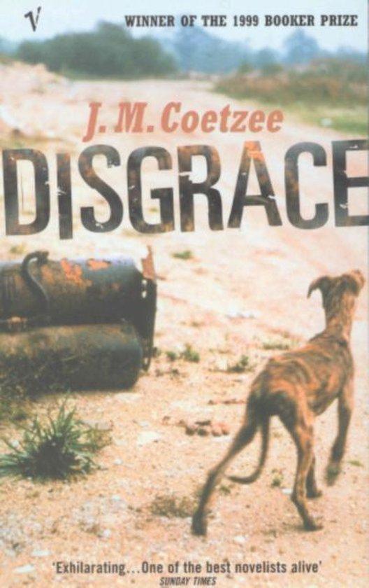 Omslag van Disgrace