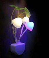 Nachtlampje Paddestoelen | LED | met Sensor | Nachtlamp voor kinderen | Gekleurd Licht