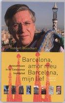 NOS-correspondentenreeks 9 - Barcelona, amor meu Barcelona, mijn lief