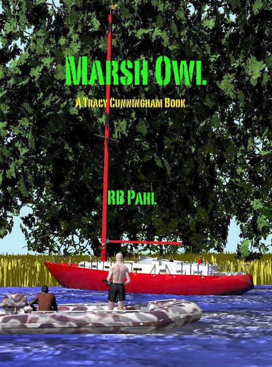 Marsh Owl: TCPI 6