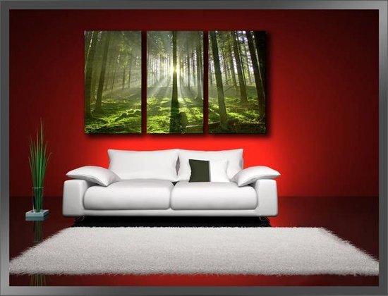 Bol Com Canvas Schilderijen Wanddecoratie Woonkamer Slaapkamer Schilderij Bos Groen