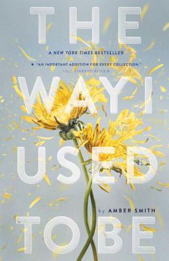 Boek cover The Way I Used to Be van Amber Smith (Paperback)