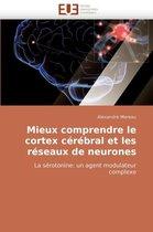 Mieux Comprendre Le Cortex C�r�bral Et Les R�seaux de Neurones