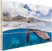 Schildpad bij eiland Hout 80x60 cm - Foto print op Hout (Wanddecoratie)