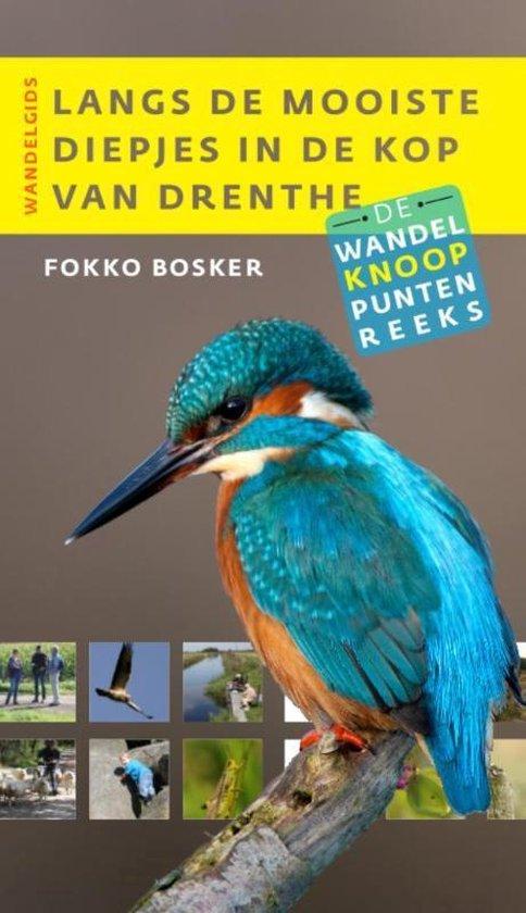 Wandelknooppuntenreeks - Langs de mooiste diepjes in de Kop van Drenthe - Fokko Bosker |