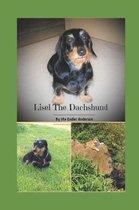 Lisel the Dachshund