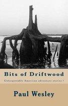 Bits of Driftwood