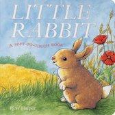 Boek cover Little Rabbit van Piers Harper