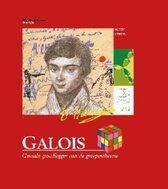 Galois. Geniale grondlegger van de groepentheorie
