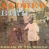 Break It Yourself-Cd+Dvd-