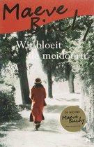 Wit Bloeit De Meidoorn