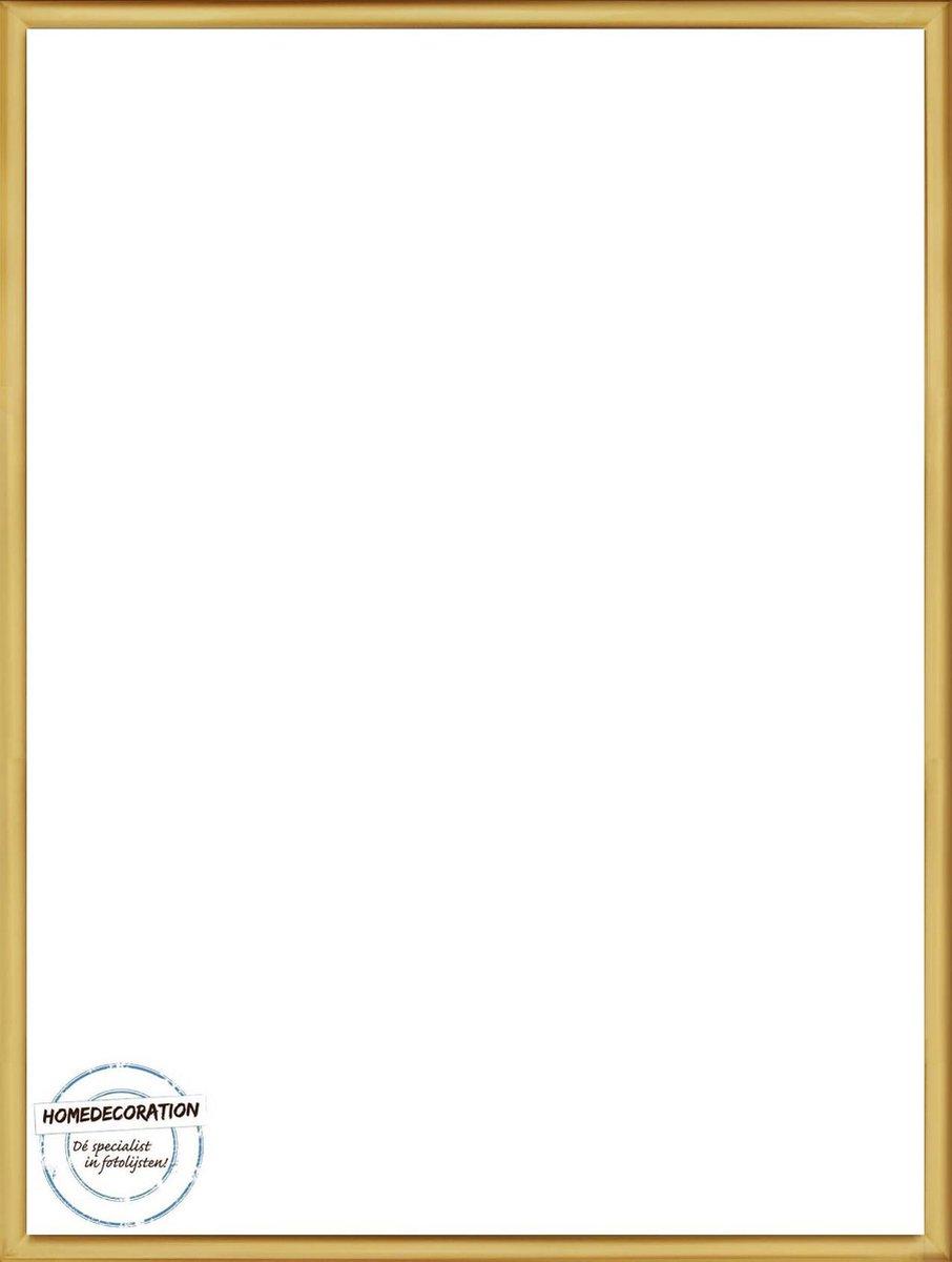Homedecoration Almelo – Fotolijst – Fotomaat – 55 x 88 cm – Vintage Goud