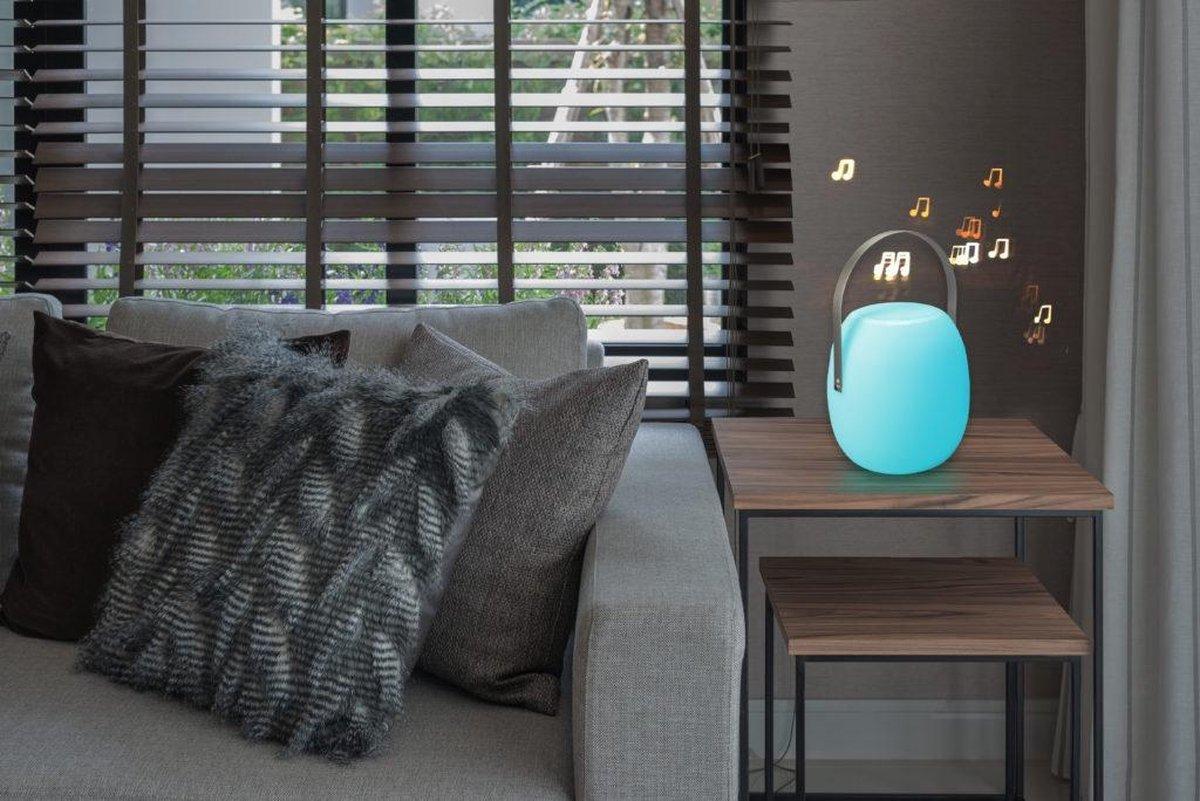 Dreamled Portable Speaker LED Light - PSLL-100 - DreamLED