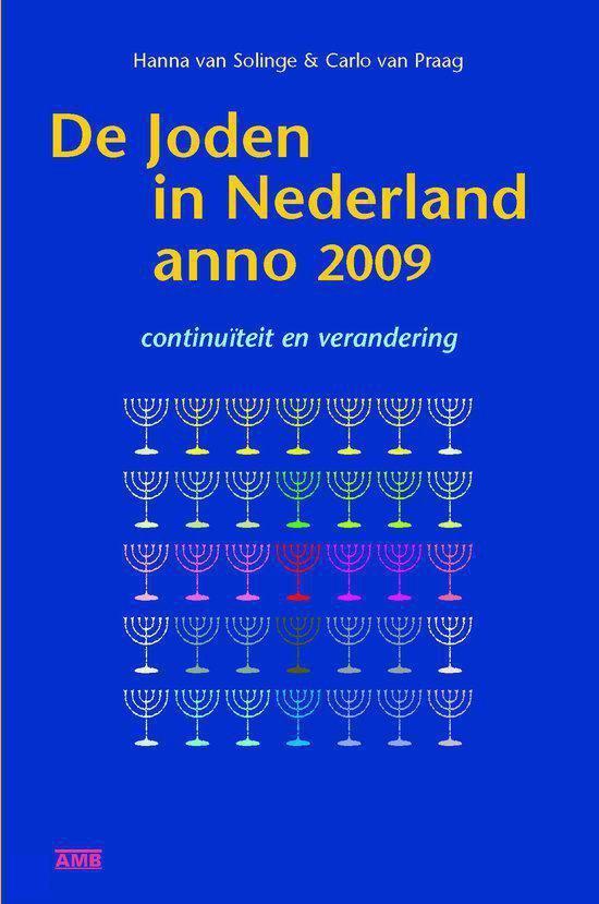De Joden In Nederland Anno 2009 - Hanna van Solinge |