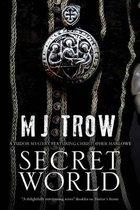 Secret World