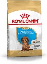 Royal Canin Dachshund Puppy - Hondenvoer - 1.5 kg