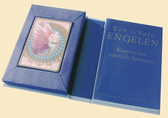 Een Schare Engelen - Angela Mcgerr pdf epub