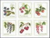 Thea Gouverneur Borduurpakket 2091A 6x Fruit - Aida stof 100% katoen