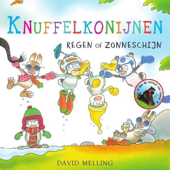 Knuffelkonijnen 2 - Regen of zonneschijn - David Melling pdf epub