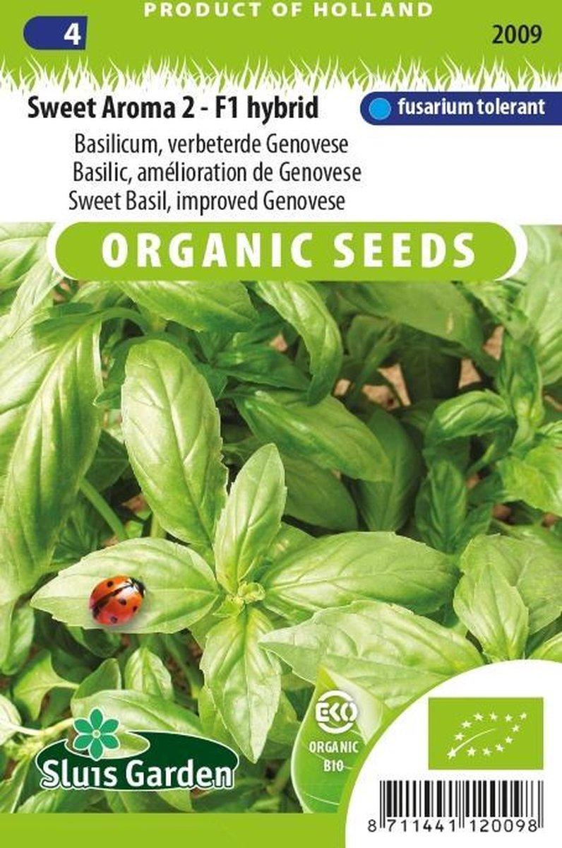 Sluis Garden - Basilicum Sweet Aroma 2 F Biologisch (Ocimum basilicum)