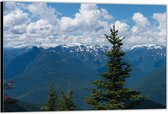 Dibond –Bergen met Bomen– 120x80 Foto op Aluminium (Wanddecoratie van metaal)