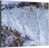 Dibond –IJspegels– 50x50 Foto op Aluminium (Wanddecoratie van metaal)