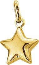 Sparkle14 Hanger Ster - Goud
