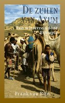 De zuilen van Axum