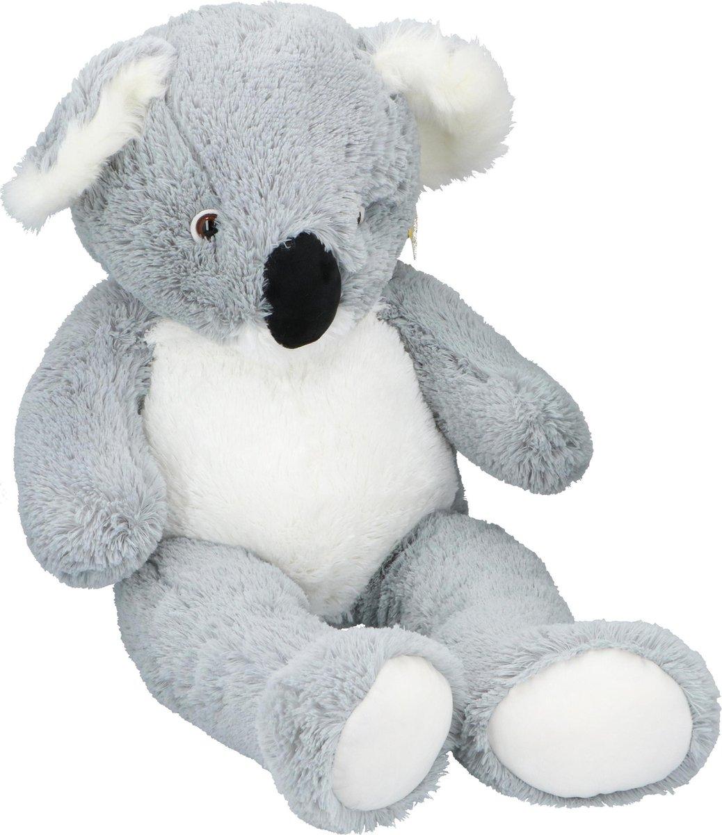 n 11 kleurplaten koala beertjes