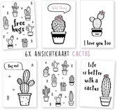wenskaarten - kaartenset - ansichtkaarten - Cactus - verjaardag - diverse - 6 stuks