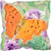 Buitenkussen vlinder S