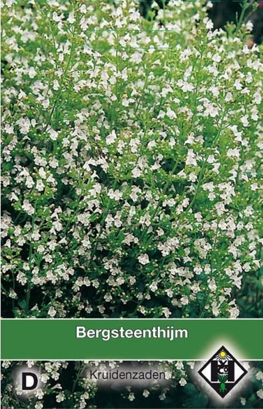 Van Hemert - Bergsteentijm (Calamintha nepeta)