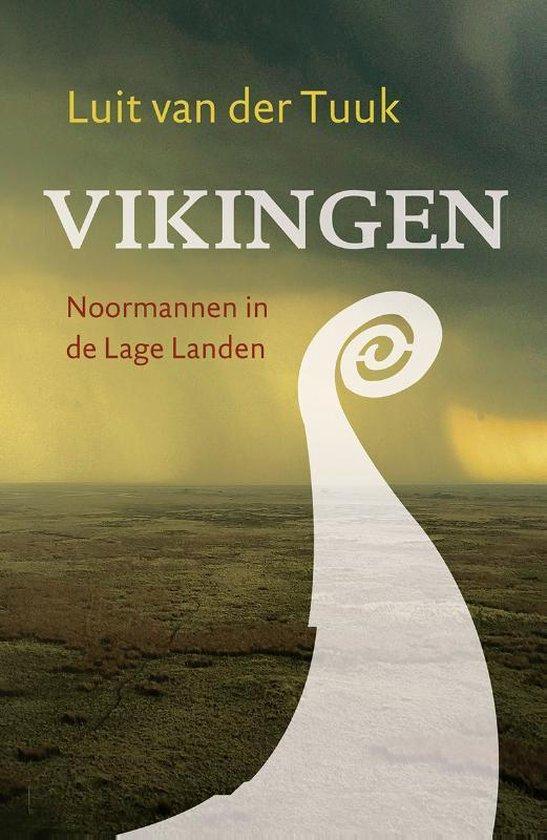 Boek cover Vikingen van Luit van der Tuuk (Paperback)