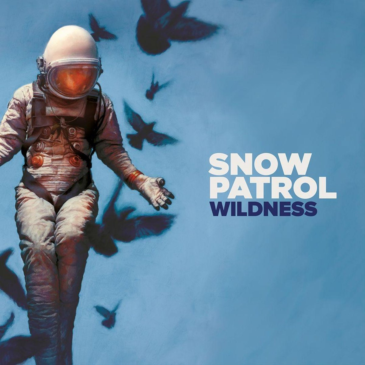 Wildness (LP) - Snow Patrol