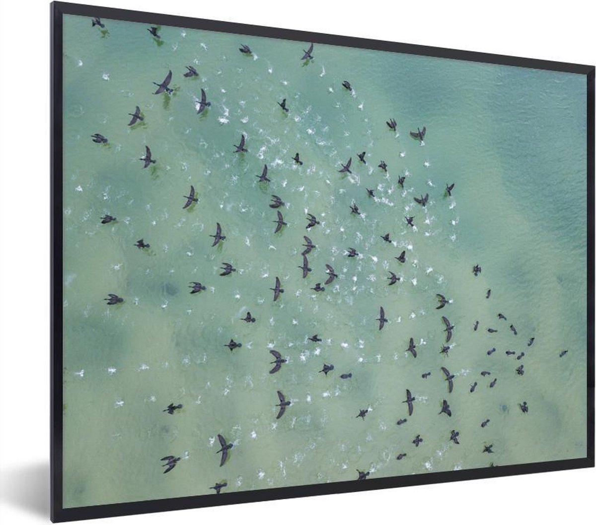 Foto in lijst - Bovenaanzicht van vogels boven de zee fotolijst zwart zonder passe partout 80x60 cm - Poster in lijst (Wanddecoratie woonkamer / slaapkamer) / Zee en Strand
