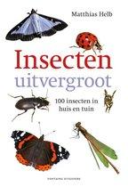 Insecten uitvergroot. 100 insecten in huis en tuin