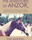 The Adventures of Anzor