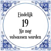 Verjaardag Tegeltje met Spreuk (19 jaar: Eindelijk 19! nu nog volwassen worden! + cadeau verpakking & plakhanger