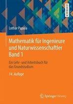 Mathematik F r Ingenieure Und Naturwissenschaftler Band 1