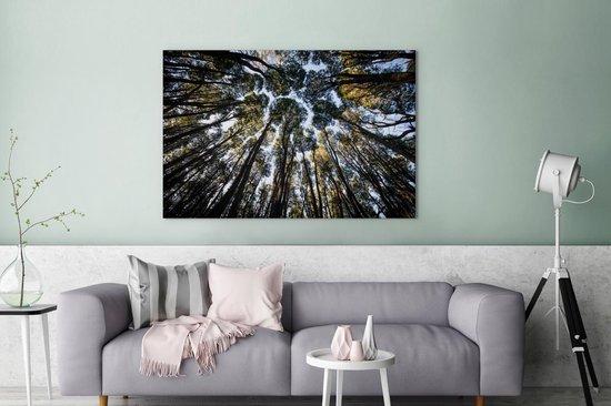 Zicht op boomtoppen vanuit het Argentijnse Nationaal park Nahuel Huapi Canvas 140x90 cm - Foto print op Canvas schilderij (Wanddecoratie woonkamer / slaapkamer)